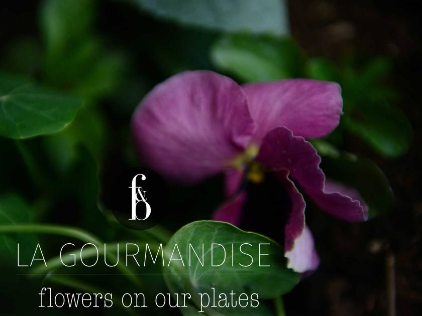 FLOWERS ON OUR PLATE